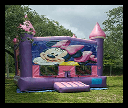 Minnie Mouse bounce house 13x13 $90.00
